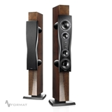 Picture of Dynaudio C4 Platinum