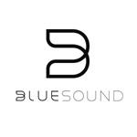 Изображение для производителя BlueSound